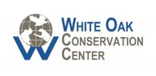 white oak cons